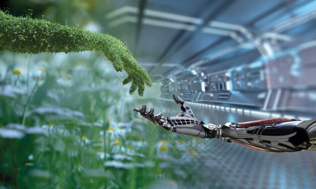 Wachstumsbranche Cleantech: Gezielte Unterstützung in volatilen Zeiten